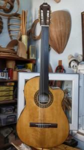 Cutaway-Ramires Gitar - Ön